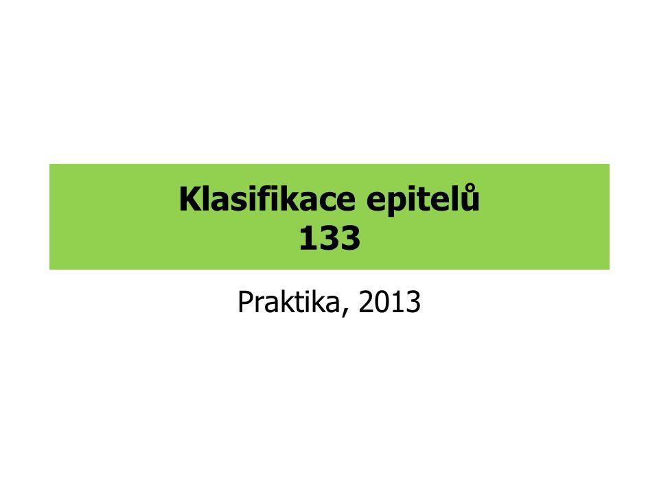 Klasifikace epitelů 133 Praktika, 2013