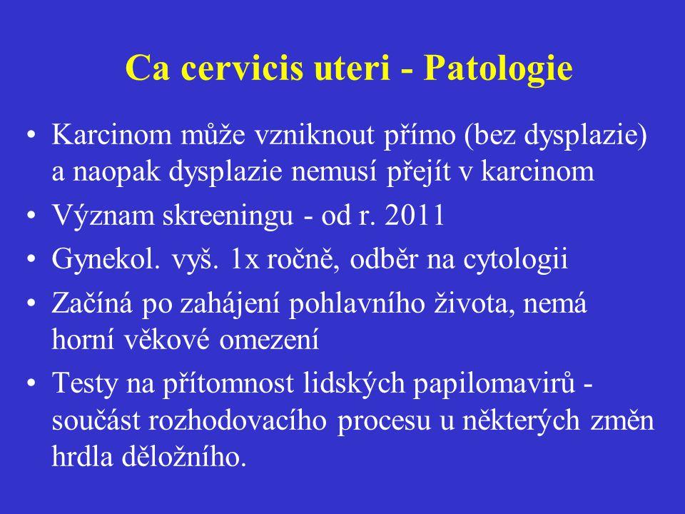 Ca cervicis uteri - Patologie Karcinom může vzniknout přímo (bez dysplazie) a naopak dysplazie nemusí přejít v karcinom Význam skreeningu - od r. 2011