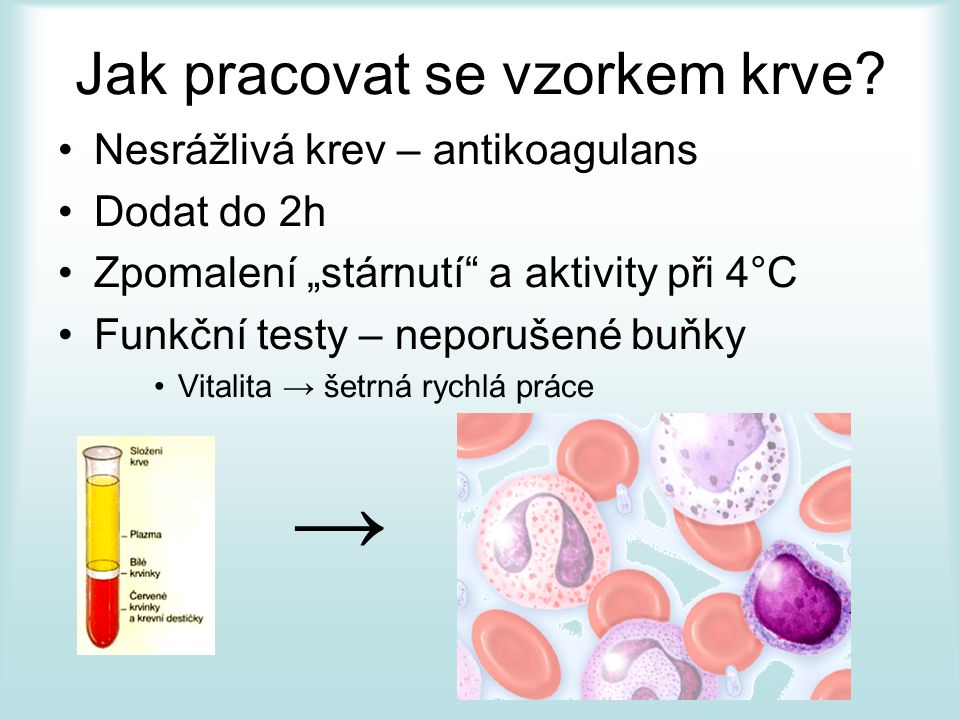 """Jak pracovat se vzorkem krve? Nesrážlivá krev – antikoagulans Dodat do 2h Zpomalení """"stárnutí"""" a aktivity při 4°C Funkční testy – neporušené buňky Vit"""