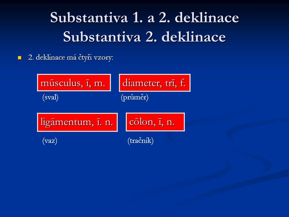 Substantiva 1.a 2. deklinace Substantiva 2. deklinace 2.
