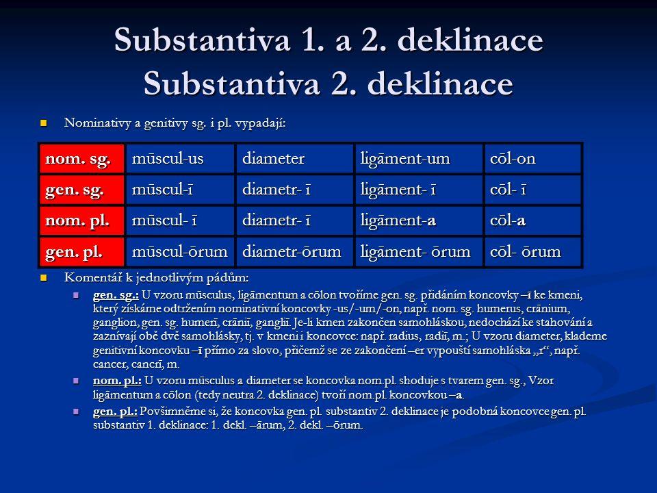 Substantiva 1.a 2. deklinace Substantiva 2. deklinace Nominativy a genitivy sg.