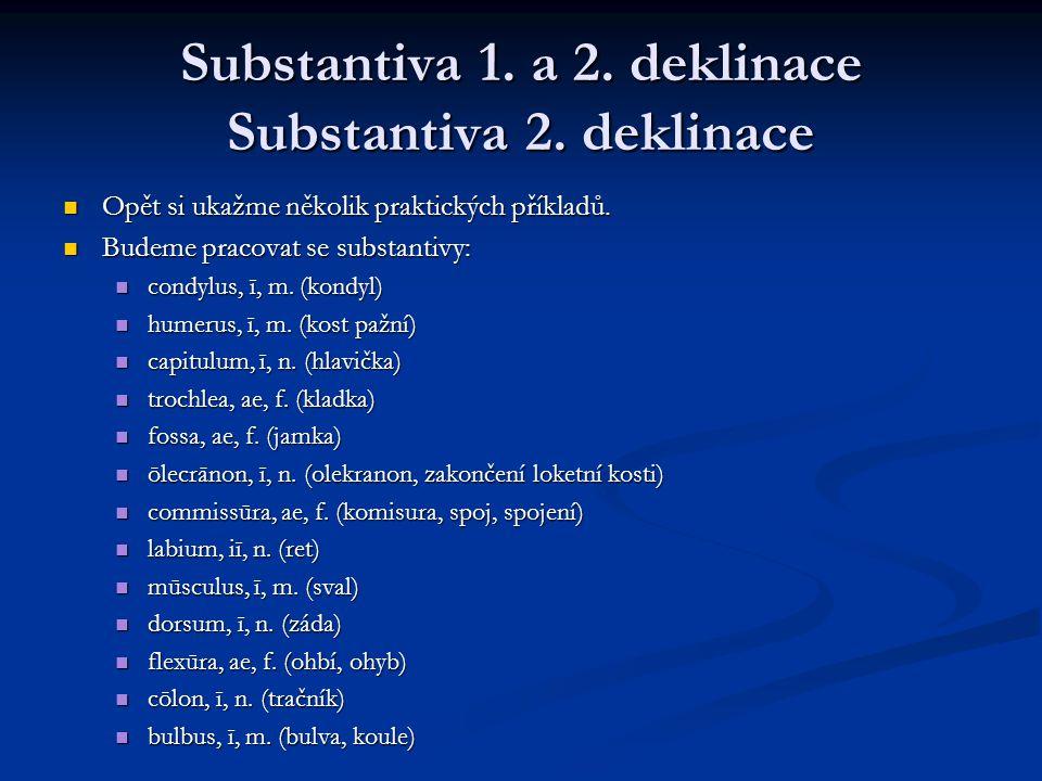 Substantiva 1.a 2. deklinace Substantiva 2. deklinace Opět si ukažme několik praktických příkladů.