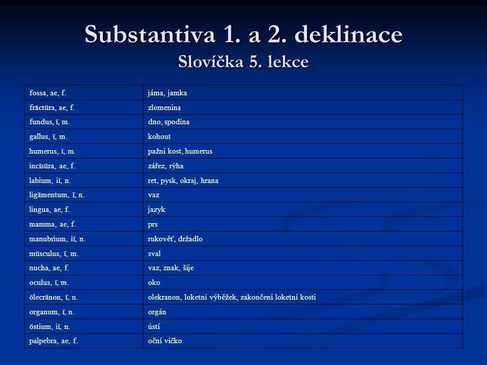 Substantiva 1.a 2. deklinace Slovíčka 5.