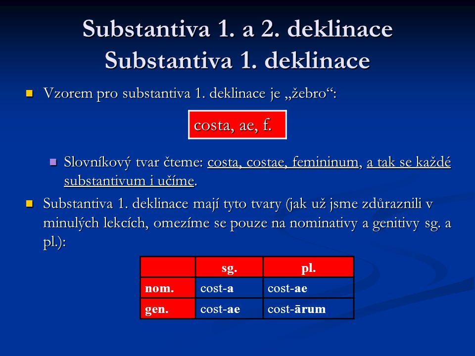 Substantiva 1.a 2. deklinace Substantiva 1. deklinace Vzorem pro substantiva 1.