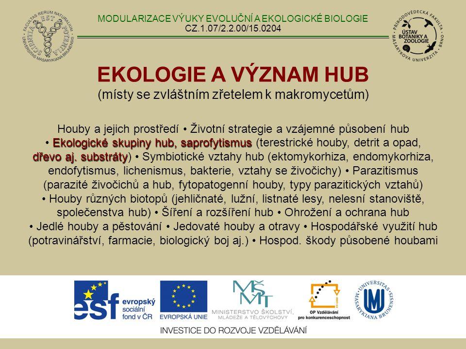 EKOLOGIE A VÝZNAM HUB (místy se zvláštním zřetelem k makromycetům) Ekologické skupiny hub, saprofytismus dřevo aj. substráty Houby a jejich prostředí