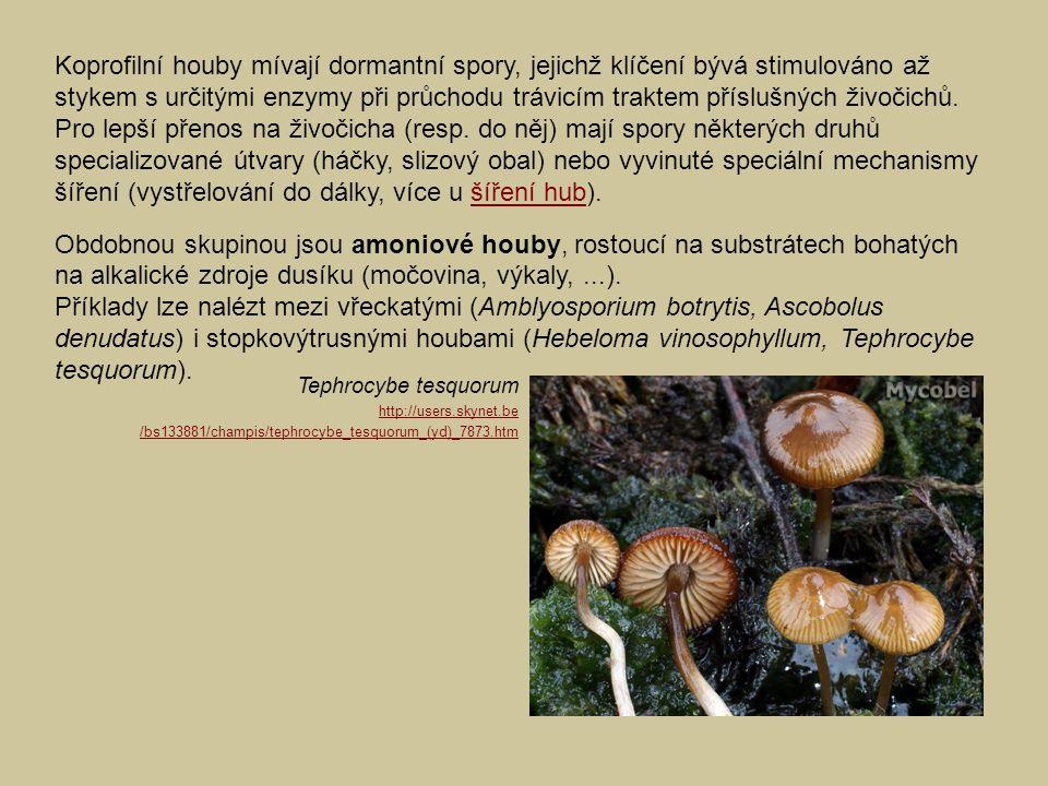 Koprofilní houby mívají dormantní spory, jejichž klíčení bývá stimulováno až stykem s určitými enzymy při průchodu trávicím traktem příslušných živoči