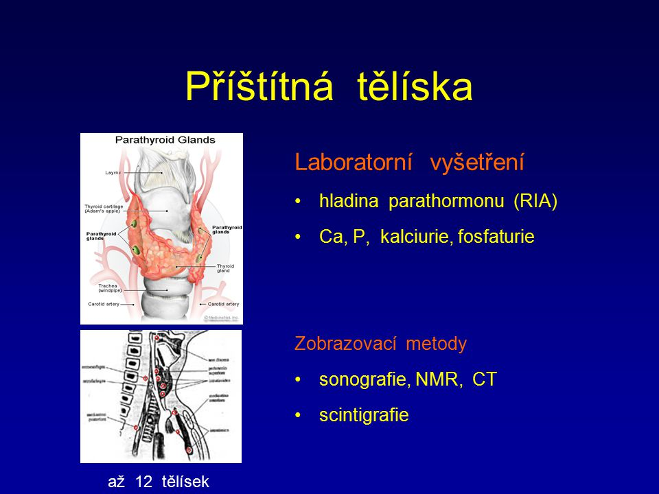Příštítná tělíska Laboratorní vyšetření hladina parathormonu (RIA) Ca, P, kalciurie, fosfaturie Zobrazovací metody sonografie, NMR, CT scintigrafie až