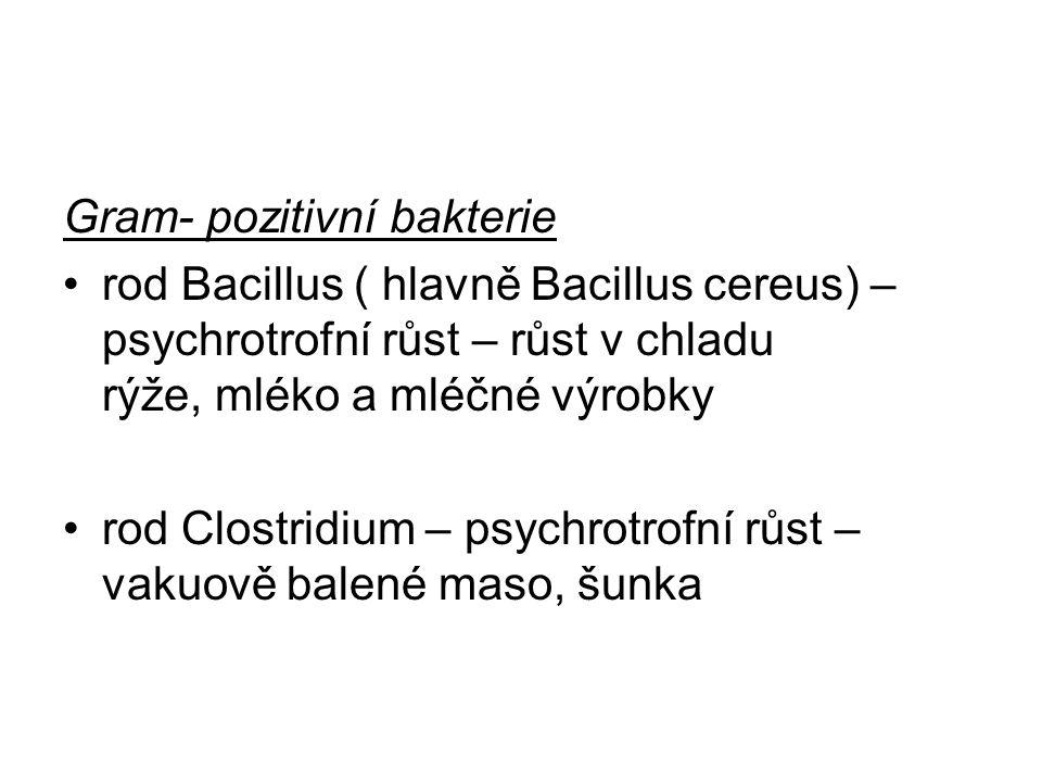 Gram- pozitivní bakterie rod Bacillus ( hlavně Bacillus cereus) – psychrotrofní růst – růst v chladu rýže, mléko a mléčné výrobky rod Clostridium – ps