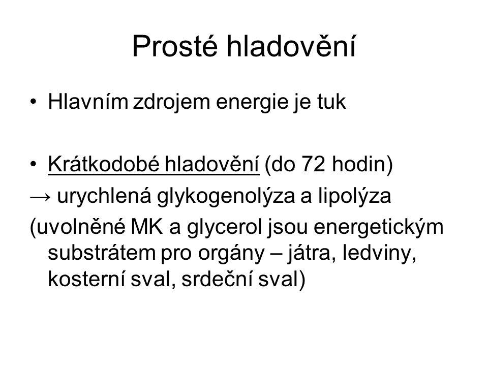 Prosté hladovění Hlavním zdrojem energie je tuk Krátkodobé hladovění (do 72 hodin) → urychlená glykogenolýza a lipolýza (uvolněné MK a glycerol jsou energetickým substrátem pro orgány – játra, ledviny, kosterní sval, srdeční sval)