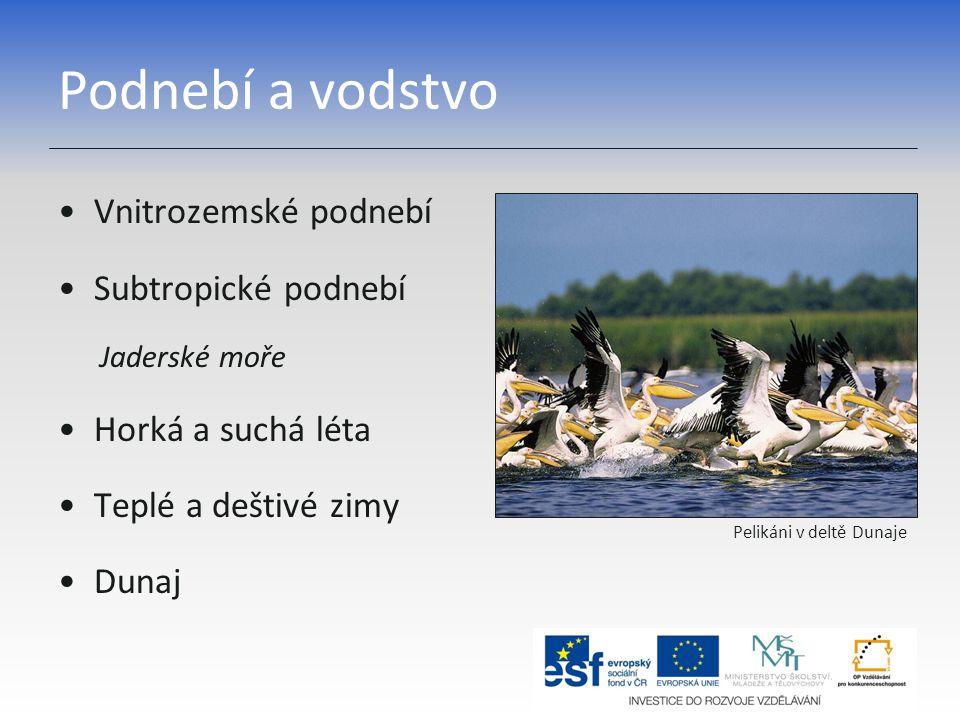 Podnebí a vodstvo Vnitrozemské podnebí Subtropické podnebí Jaderské moře Horká a suchá léta Teplé a deštivé zimy Dunaj Pelikáni v deltě Dunaje