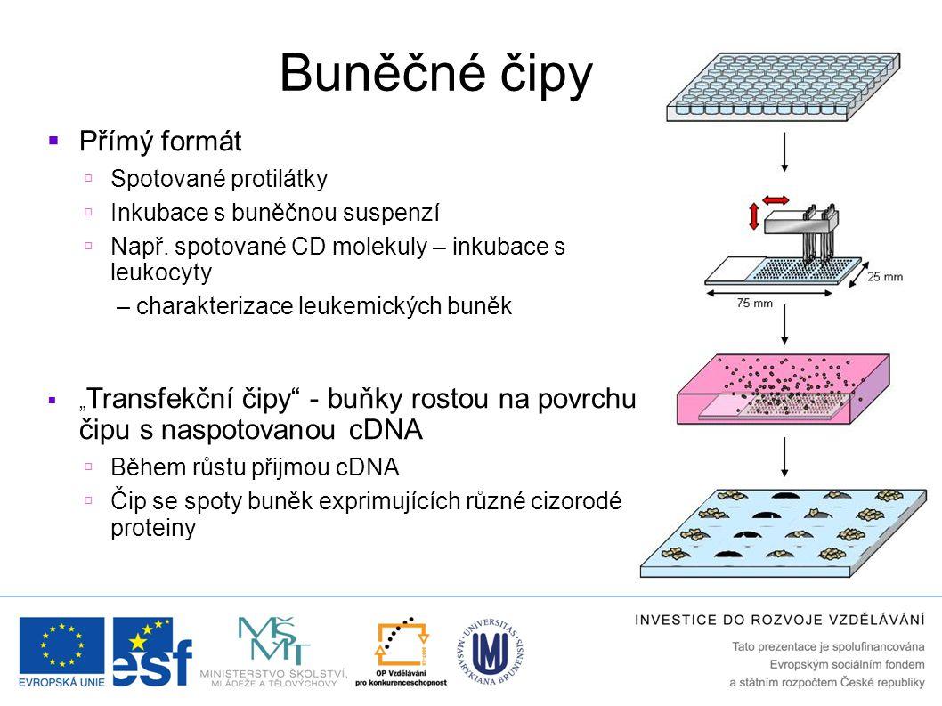 Buněčné čipy  Přímý formát  Spotované protilátky  Inkubace s buněčnou suspenzí  Např. spotované CD molekuly – inkubace s leukocyty – charakterizac