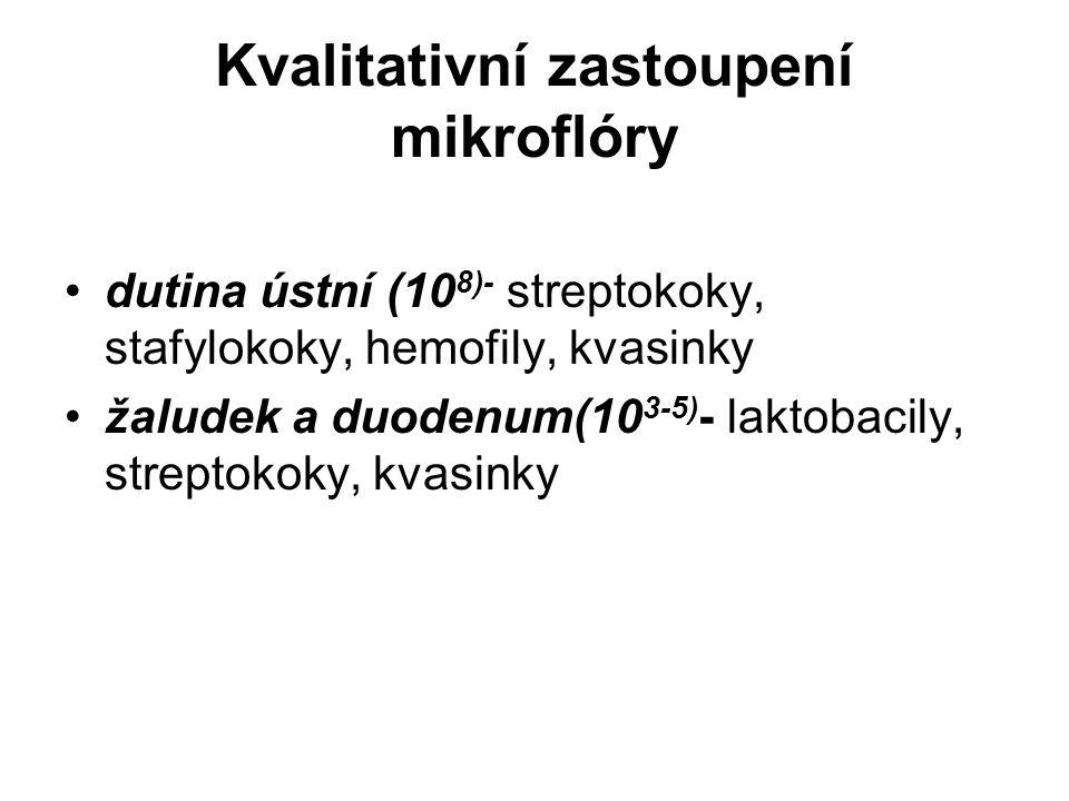 Kvalitativní zastoupení mikroflóry dutina ústní (10 8)- streptokoky, stafylokoky, hemofily, kvasinky žaludek a duodenum(10 3-5) - laktobacily, streptokoky, kvasinky