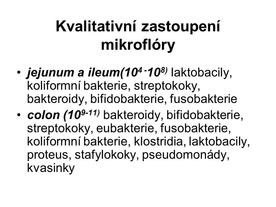 Kvalitativní zastoupení mikroflóry jejunum a ileum(10 4 - 10 8) laktobacily, koliformní bakterie, streptokoky, bakteroidy, bifidobakterie, fusobakterie colon (10 9-11) bakteroidy, bifidobakterie, streptokoky, eubakterie, fusobakterie, koliformní bakterie, klostridia, laktobacily, proteus, stafylokoky, pseudomonády, kvasinky