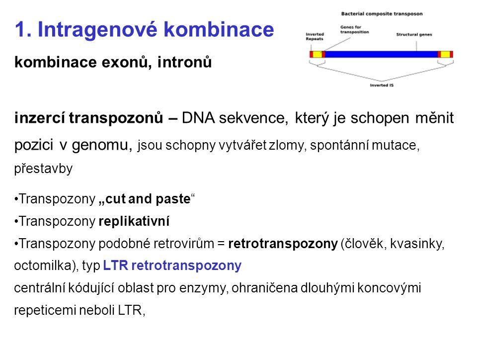 1. Intragenové kombinace kombinace exonů, intronů inzercí transpozonů – DNA sekvence, který je schopen měnit pozici v genomu, jsou schopny vytvářet zl