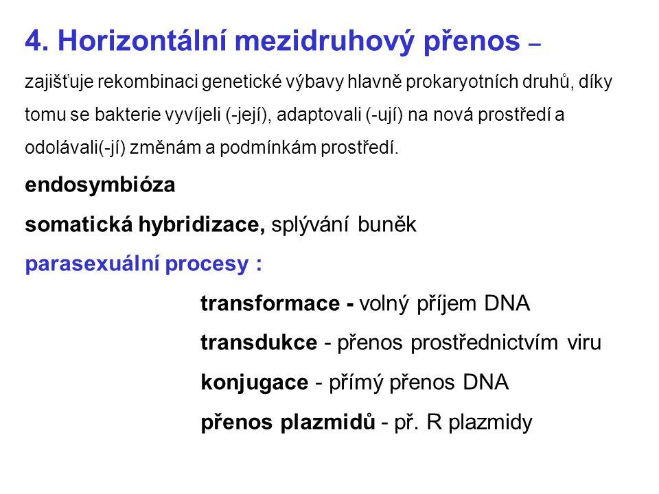 4. Horizontální mezidruhový přenos – zajišťuje rekombinaci genetické výbavy hlavně prokaryotních druhů, díky tomu se bakterie vyvíjeli (-její), adapto