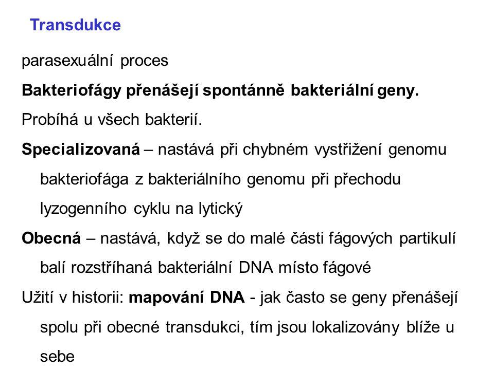 parasexuální proces Bakteriofágy přenášejí spontánně bakteriální geny. Probíhá u všech bakterií. Specializovaná – nastává při chybném vystřižení genom