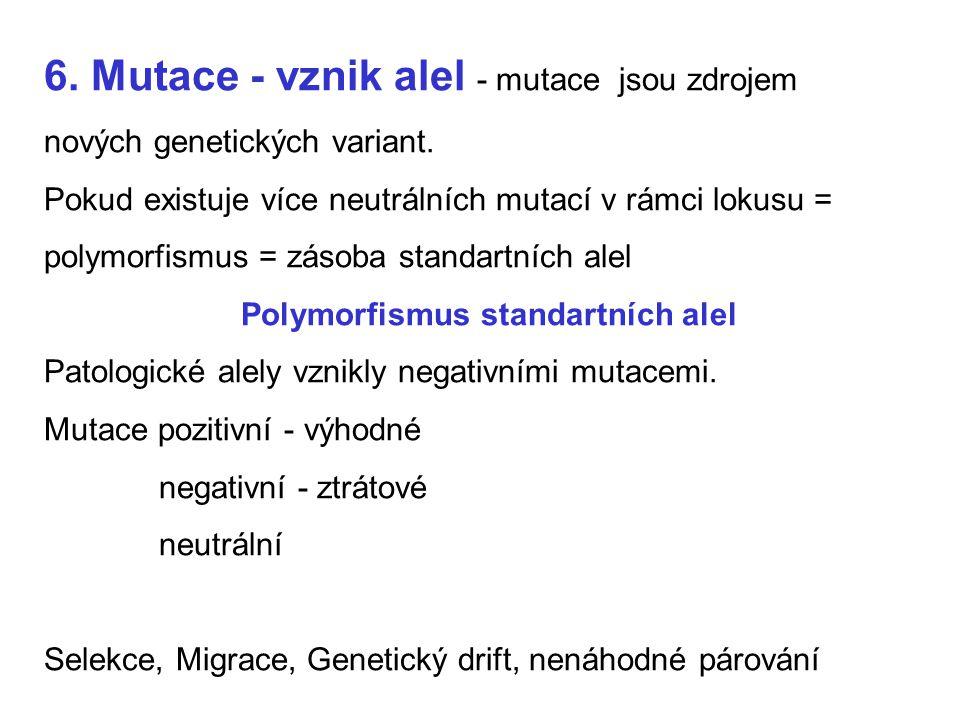 6. Mutace - vznik alel - mutace jsou zdrojem nových genetických variant. Pokud existuje více neutrálních mutací v rámci lokusu = polymorfismus = zásob
