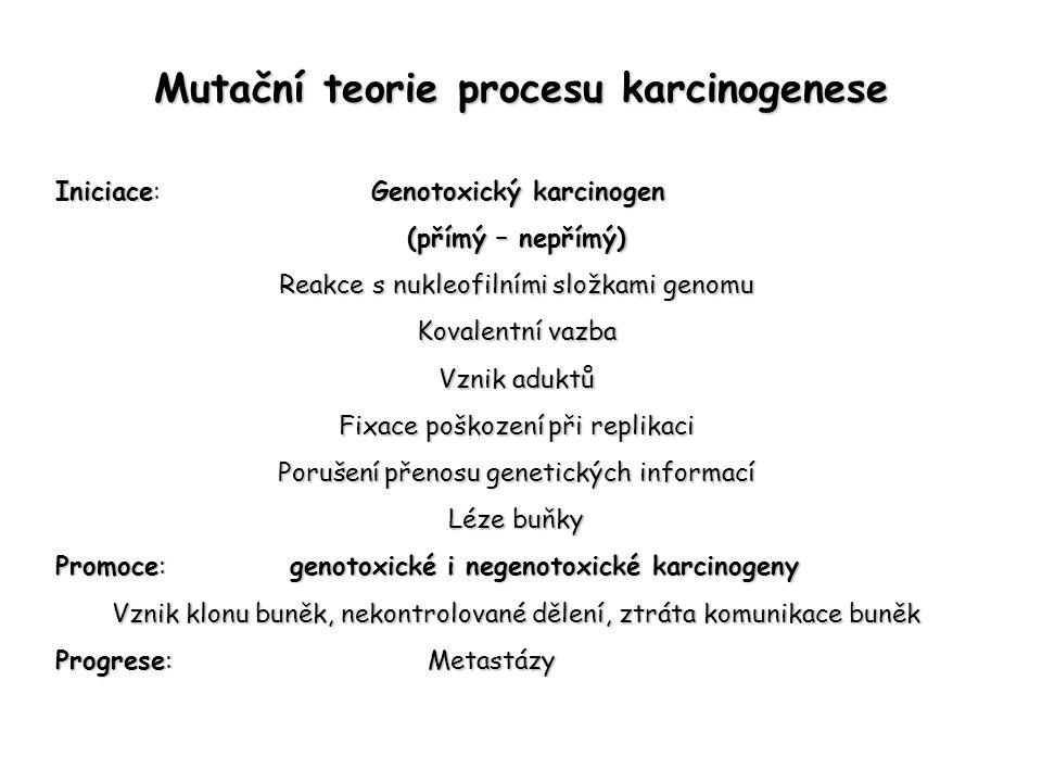 Mutační teorie procesu karcinogenese IniciaceGenotoxický karcinogen Iniciace: Genotoxický karcinogen (přímý – nepřímý) Reakce s nukleofilními složkami