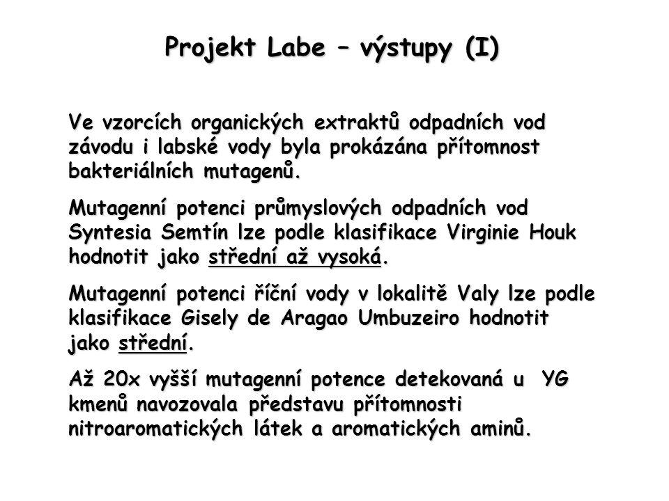 Projekt Labe – výstupy (I) Ve vzorcích organických extraktů odpadních vod závodu i labské vody byla prokázána přítomnost bakteriálních mutagenů. Mutag