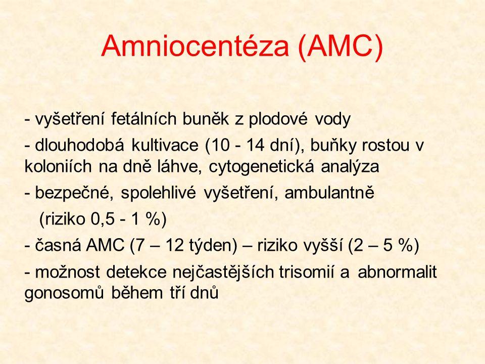 Amniocentéza (AMC) - vyšetření fetálních buněk z plodové vody - dlouhodobá kultivace (10 - 14 dní), buňky rostou v koloniích na dně láhve, cytogenetic