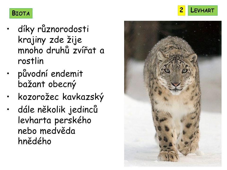 díky různorodosti krajiny zde žije mnoho druhů zvířat a rostlin původní endemit bažant obecný kozorožec kavkazský dále několik jedinců levharta perského nebo medvěda hnědého B IOTA 2L EVHART