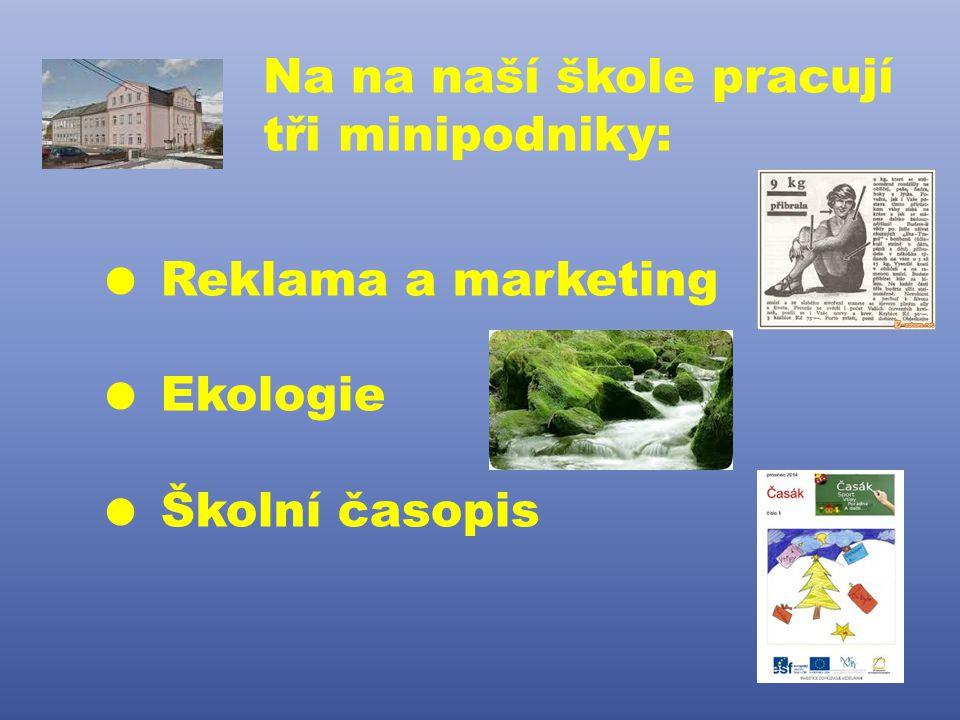 Na na naší škole pracují tři minipodniky:  Reklama a marketing  Ekologie  Školní časopis