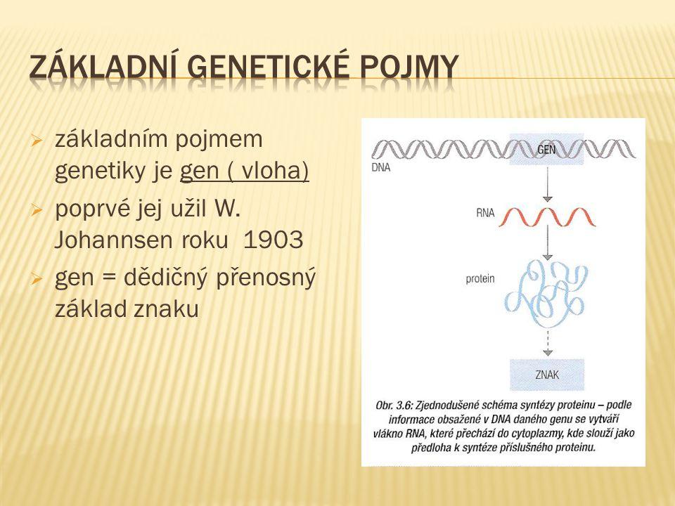  základním pojmem genetiky je gen ( vloha)  poprvé jej užil W.