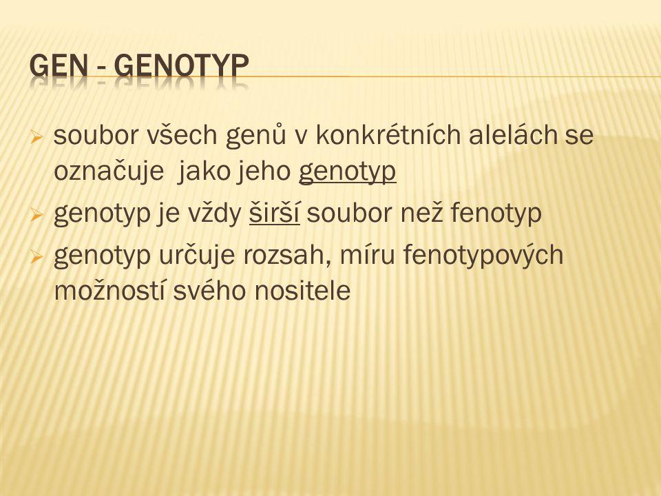  soubor všech genů v konkrétních alelách se označuje jako jeho genotyp  genotyp je vždy širší soubor než fenotyp  genotyp určuje rozsah, míru fenotypových možností svého nositele