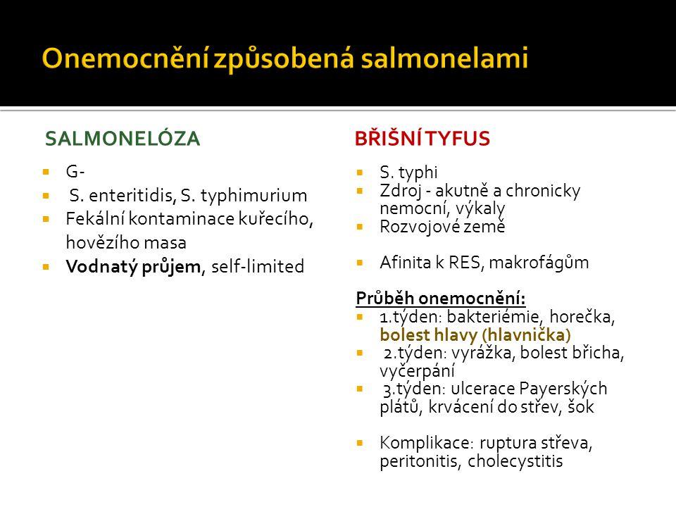 CHOLERA  G-, Vibrio cholerae  Choleratoxin  Epidemie (Ganga, Haiti)  Zdroj kontaminovaná voda, potraviny, nemocní  Vodnatý průjem (ochromení absorpční funkce enterocytů)  Ztráty vody až 14l/den  Těžká dehydratace, minerálový rozvrat  Není horečka, bolest břicha, krev ani hlen ve stolici  Terapie: atb, hrazení iontů a tekutin PSEUDOMEMBRANÓZNÍ KOLITIDA - Clostridium difficile - Přemnožení po systémové atb léčbě