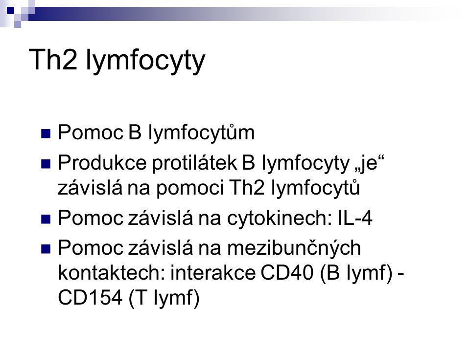 "Th2 lymfocyty Pomoc B lymfocytům Produkce protilátek B lymfocyty ""je"" závislá na pomoci Th2 lymfocytů Pomoc závislá na cytokinech: IL-4 Pomoc závislá"
