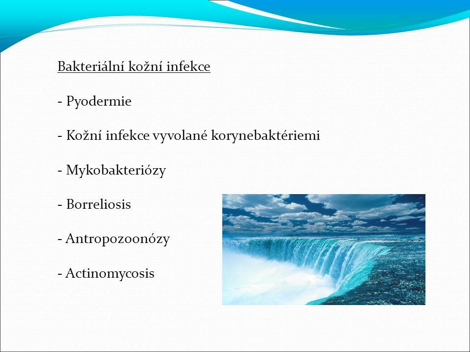 PYODERMIE - bakteriální infekce kůže vyvolané pyogenními koky - Staphylococcus aureus - beta hemolytické streptokoky skupiny A - pyodermie vázané na folikuly - pyodermie vázané na potní žlázy - pyodermie povrchové - pyodermie hluboké