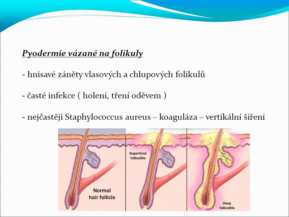 Pyodermie vázané na folikuly - hnisavé záněty vlasových a chlupových folikulů - časté infekce ( holení, tření oděvem ) - nejčastěji Staphylococcus aureus – koaguláza – vertikální šíření
