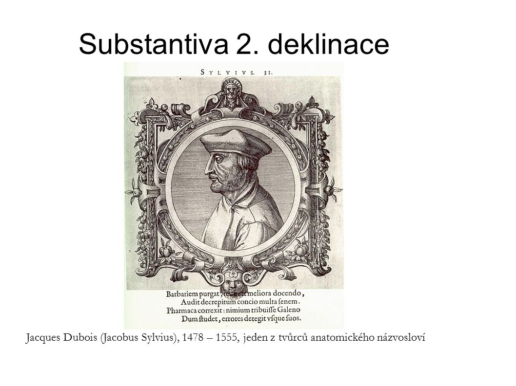 Substantiva 2.deklinace Příklad 2: Pojmenujme spojení (commissūra) horního a dolního rtu (labium).