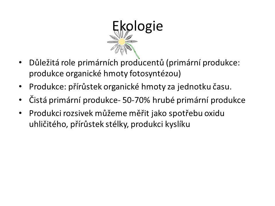 Ekologie Důležitá role primárních producentů (primární produkce: produkce organické hmoty fotosyntézou) Produkce: přírůstek organické hmoty za jednotku času.