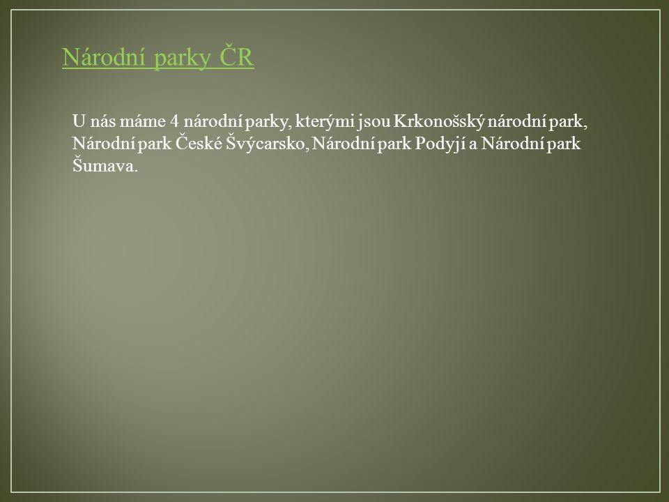 Národní parky ČR U nás máme 4 národní parky, kterými jsou Krkonošský národní park, Národní park České Švýcarsko, Národní park Podyjí a Národní park Šumava.
