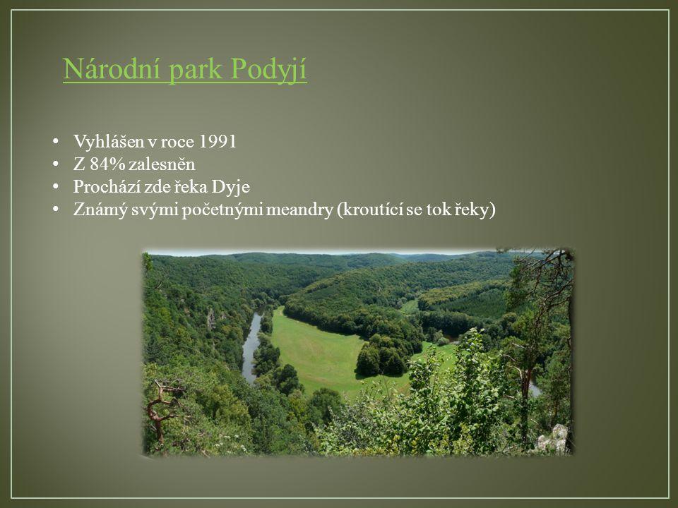 Národní park Šumava Založen v roce 1991 Největší z naších NP Mimo horských smrčin a pralesních porostů jsou nejvýznamnější slatě, rašeliniště a karová jezera