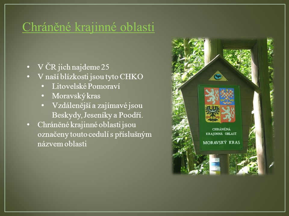 Chráněné krajinné oblasti V ČR jich najdeme 25 V naší blízkosti jsou tyto CHKO Litovelské Pomoraví Moravský kras Vzdálenější a zajímavé jsou Beskydy, Jeseníky a Poodří.