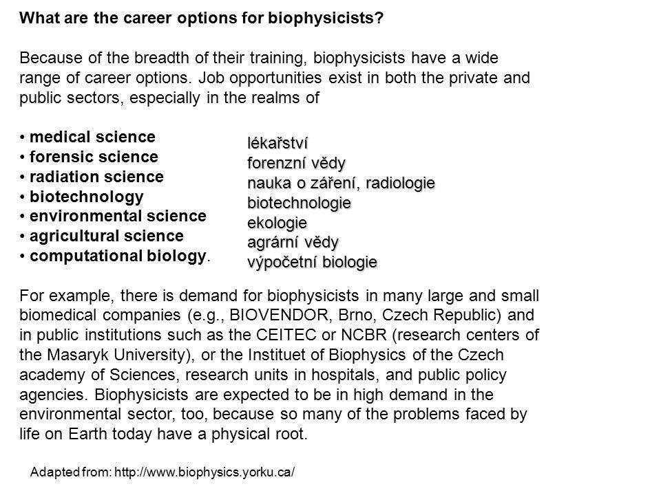 What are the career options for biophysicists? Because of the breadth of their training, biophysicists have a wide range of career options. Job opport