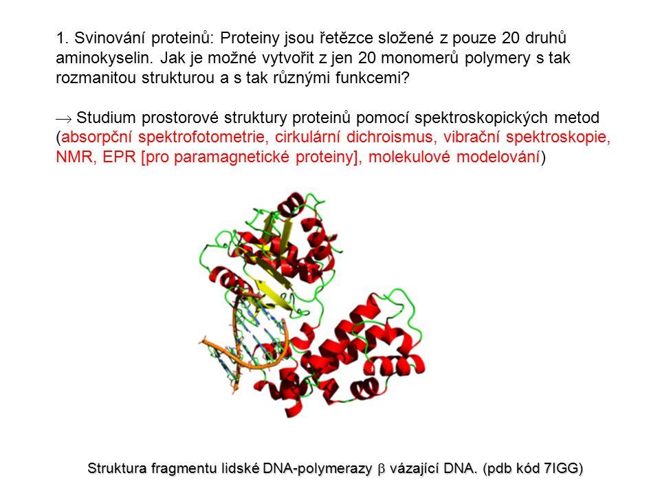 Výzkumné projekty Biofyzikální laboratoře MU 1.