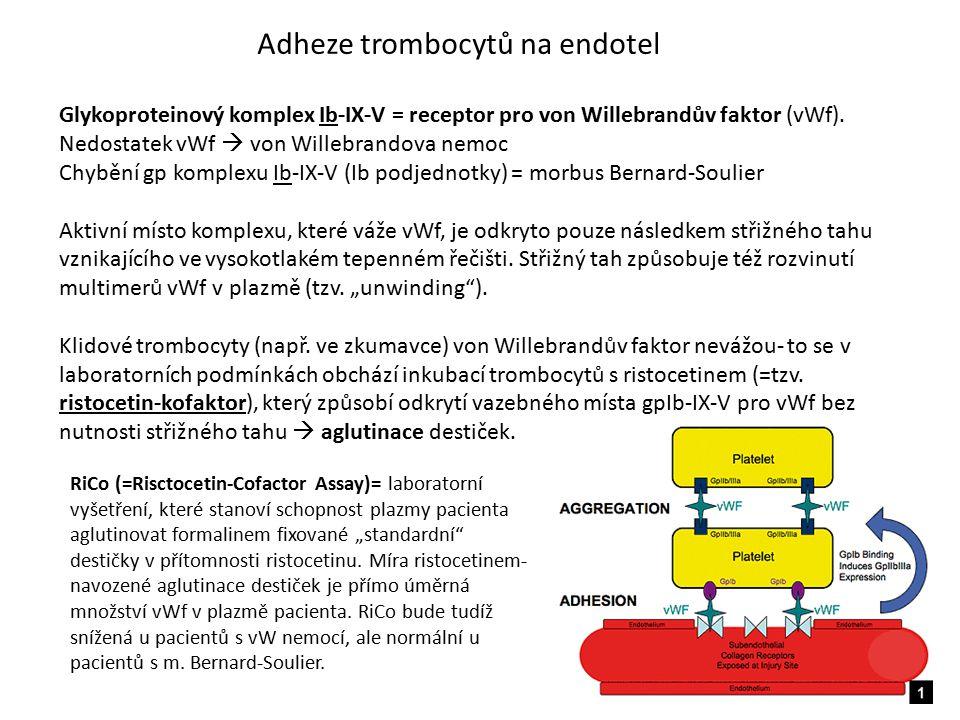 Adheze trombocytů na endotel Glykoproteinový komplex Ib-IX-V = receptor pro von Willebrandův faktor (vWf). Nedostatek vWf  von Willebrandova nemoc Ch