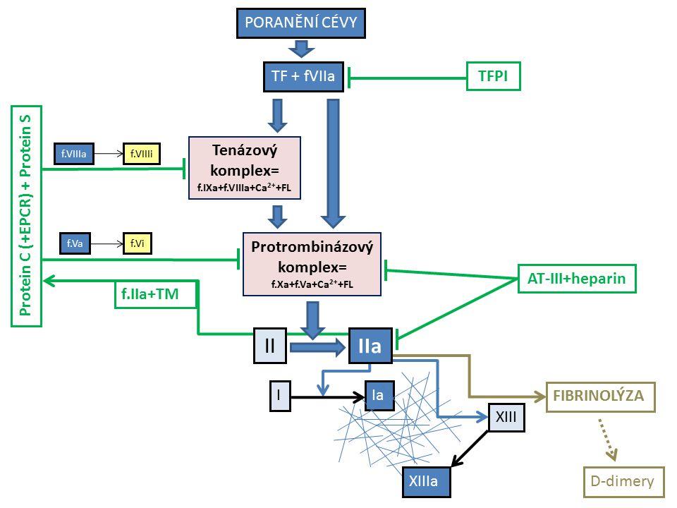 Protein C (+EPCR) + Protein S II I Ia Protrombinázový komplex= f.Xa+f.Va+Ca 2+ +FL FIBRINOLÝZA D-dimery IIa XIII XIIIa Tenázový komplex= f.IXa+f.VIIIa