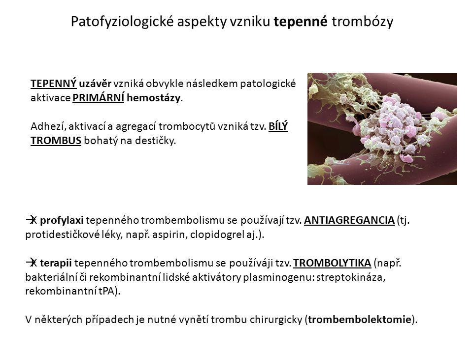 Patofyziologické aspekty vzniku tepenné trombózy TEPENNÝ uzávěr vzniká obvykle následkem patologické aktivace PRIMÁRNÍ hemostázy. Adhezí, aktivací a a