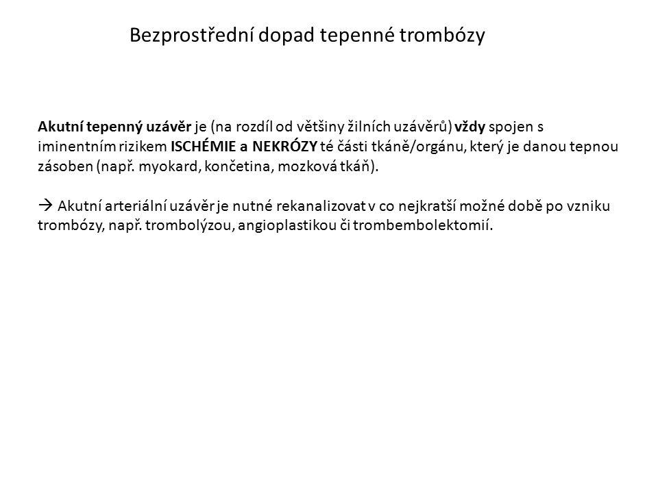 Bezprostřední dopad tepenné trombózy Akutní tepenný uzávěr je (na rozdíl od většiny žilních uzávěrů) vždy spojen s iminentním rizikem ISCHÉMIE a NEKRÓ