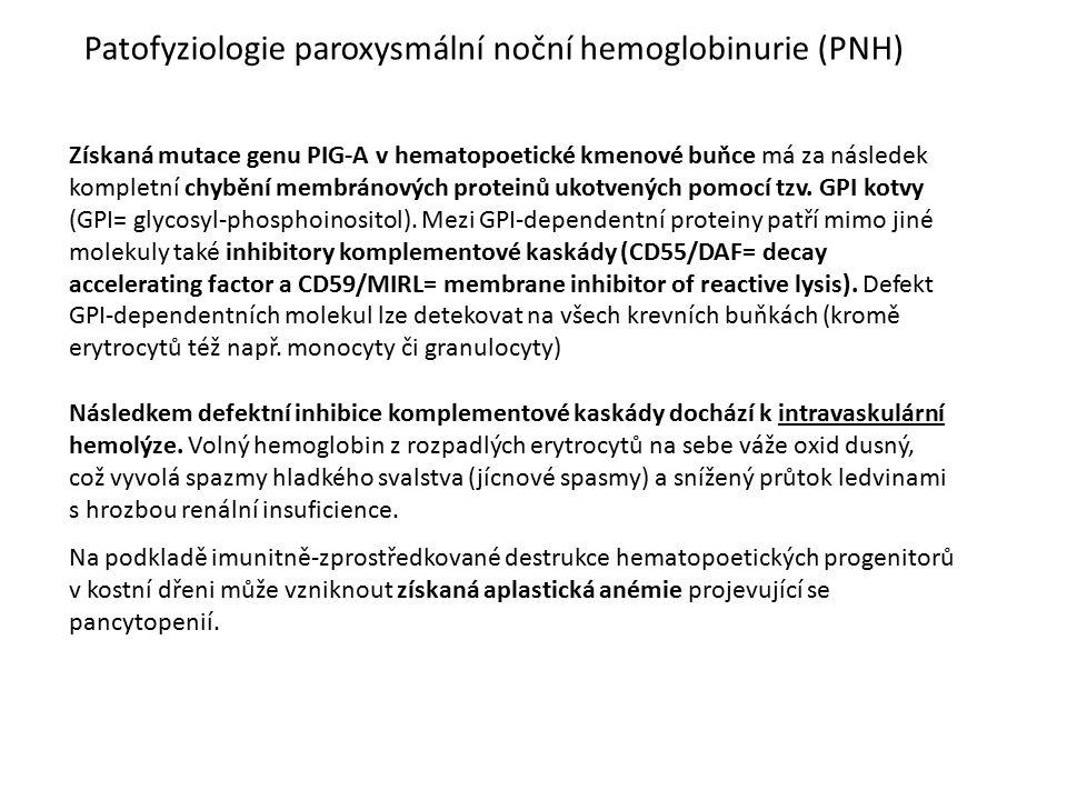 Patofyziologie paroxysmální noční hemoglobinurie (PNH) Získaná mutace genu PIG-A v hematopoetické kmenové buňce má za následek kompletní chybění membr