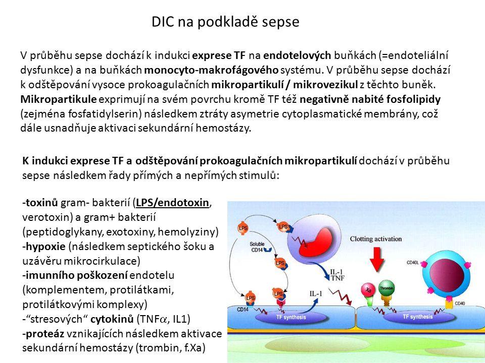 DIC na podkladě sepse V průběhu sepse dochází k indukci exprese TF na endotelových buňkách (=endoteliální dysfunkce) a na buňkách monocyto-makrofágové
