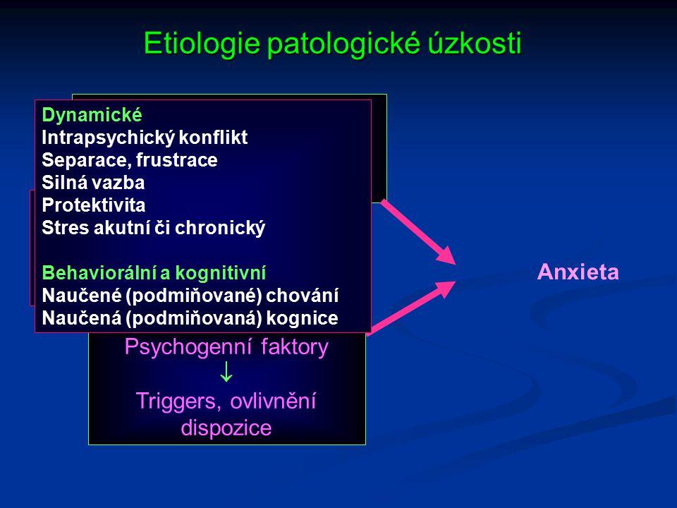 Etiologie patologické úzkosti Anxieta Biologické faktory  Dispozice GABA, NADR, 5-HT, LS a amygdala, somatická postižení (ŠŽ, feochromocytom, prolaps