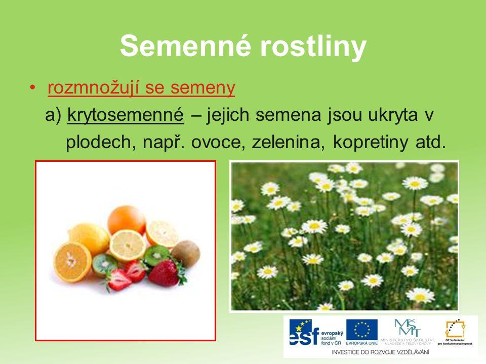 Semenné rostliny rozmnožují se semeny a) krytosemenné – jejich semena jsou ukryta v plodech, např. ovoce, zelenina, kopretiny atd.