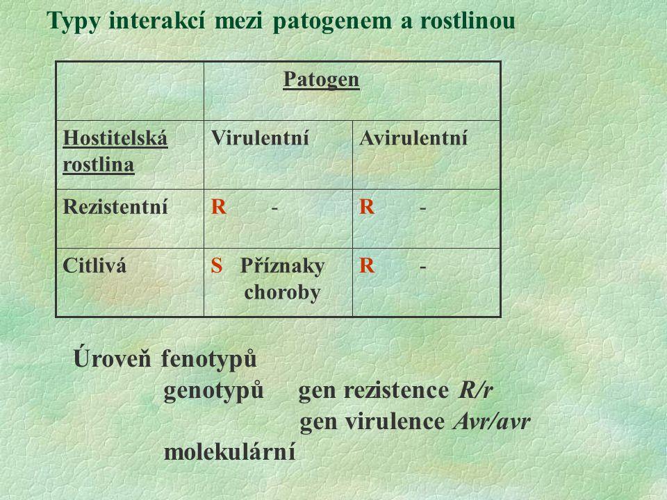 Typy interakcí mezi patogenem a rostlinou R -S Příznaky choroby Citlivá R - Rezistentní AvirulentníVirulentníHostitelská rostlina Patogen Úroveň fenotypů genotypů gen rezistence R/r gen virulence Avr/avr molekulární