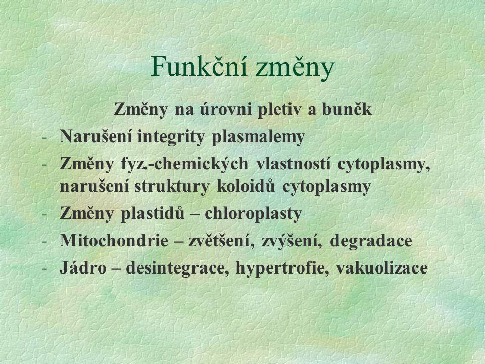 Funkční změny Změny na úrovni pletiv a buněk -Narušení integrity plasmalemy -Změny fyz.-chemických vlastností cytoplasmy, narušení struktury koloidů cytoplasmy -Změny plastidů – chloroplasty -Mitochondrie – zvětšení, zvýšení, degradace -Jádro – desintegrace, hypertrofie, vakuolizace