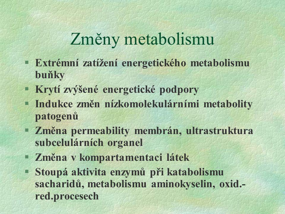 Změny metabolismu §Extrémní zatížení energetického metabolismu buňky §Krytí zvýšené energetické podpory §Indukce změn nízkomolekulárními metabolity patogenů §Změna permeability membrán, ultrastruktura subcelulárních organel §Změna v kompartamentaci látek §Stoupá aktivita enzymů při katabolismu sacharidů, metabolismu aminokyselin, oxid.- red.procesech